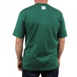 EL POLAKO koszulka LOGOBOX zielony